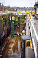Ballard Locks Cleaning 2012-03-18 07.jpg