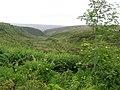 Ballynaquilly Townland - geograph.org.uk - 1376962.jpg
