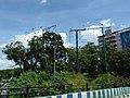 Bangalore billboards removed 5.jpg