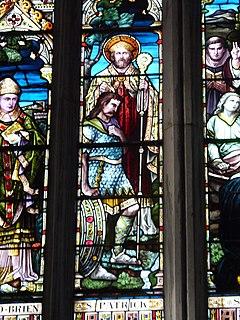 Óengus mac Nad Froích 5th-century Irish monarch