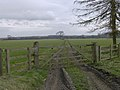 Barely discernible course of old railway at Harome Siding - geograph.org.uk - 366841.jpg