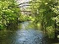 Barenton-sur-Serre (Aisne) rivière La Souche.JPG