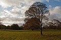 Basildon Park (6320441414).jpg