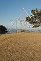Beacon of hope sunstar barry haynes.jpg