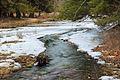 Beaver Dam Trail (8).jpg