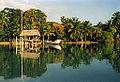 Belize 1996 Hardluck Charlie's.jpg