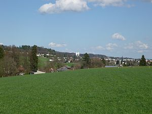 Langendorf, Switzerland - View of the municipalities of Bellach (foreground) and Langendorf (background)