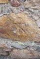 Benchmark on Y Clogwyn, Caernarfon - geograph.org.uk - 2080159.jpg