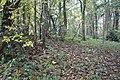 Bevisbury Camp - panoramio (1).jpg