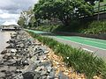 Bikeway & footpath along Brisbane River in Milton, Qld 02.JPG