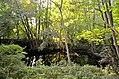 Biotop im Steinbruch Weingraben St. Georgen-Gusen 3 NDM.jpg