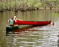 BlackwaterRiverCanoeTrescue2.jpg