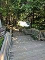 Blackwater Falls of Blackwater Falls State Park 05.jpg