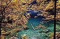 Blausee en automne.jpg