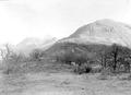 Blick vom Monte Ceneri - CH-BAR - 3239265.tif