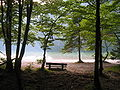Bohinj-jezero-Naklova glava.JPG