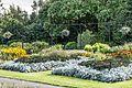 Botanic Gardens In Glasnevin (Dublin) (7951837560).jpg