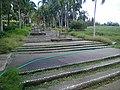 Botanical Garden of Putrajaya, Malaysia 09.jpg