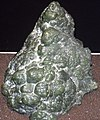 Botryoidal nephrite jade (California, USA) 1 (24644629692).jpg