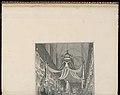 Bound Print, Pompe funèbre de Marie Thérèse d'Espagne Dauphine de France, en l'église de Notre Dame de Paris, le XXIV novembre M.D.CCXLVI (Funeral of Marie Thérèse of Spain, Dauphine of France, in the (CH 18221187-2).jpg
