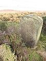 Boundary stone - geograph.org.uk - 700308.jpg