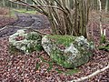 Bradenham Puddingstone - geograph.org.uk - 107374.jpg