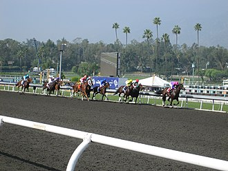 Breeders' Cup - The championship races in 2009 (pictured) were the second year to have a day devoted to female horses. Since 2013, the gender on both days is mixed between races.