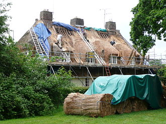 Briantspuddle - Thatching at work in Bladen Valley, Briantspuddle
