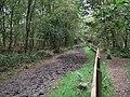 Bridle path at Brereton Heath - geograph.org.uk - 1562393.jpg