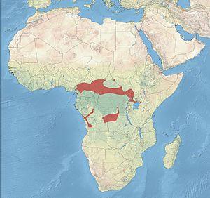 Brown twinspot - Image: Brown Twinspot Distribution
