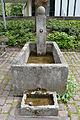 Brunnen St.Albert.JPG
