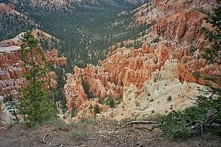 Bryce canyon3 ut.jpg