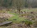 Bullington - Rough Ground - geograph.org.uk - 670999.jpg