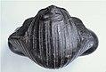 Bust of King Amenemhat III MET 45.2.6 08.jpg