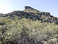 Butcher Jones Trail - Mt. Pinter Loop Trail, Saguaro Lake - panoramio (128).jpg