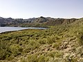 Butcher Jones Trail - Mt. Pinter Loop Trail, Saguaro Lake - panoramio (133).jpg