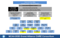 CARE Organizational Chart - Year 2 3-2-2015.png