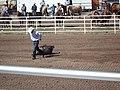 CFD Tie-down roping Ross Tucker -2.jpg