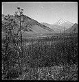 CH-NB - Persien, Elburs-Gebirge (Elburz)- Lahr-Tal - Annemarie Schwarzenbach - SLA-Schwarzenbach-A-5-06-148.jpg