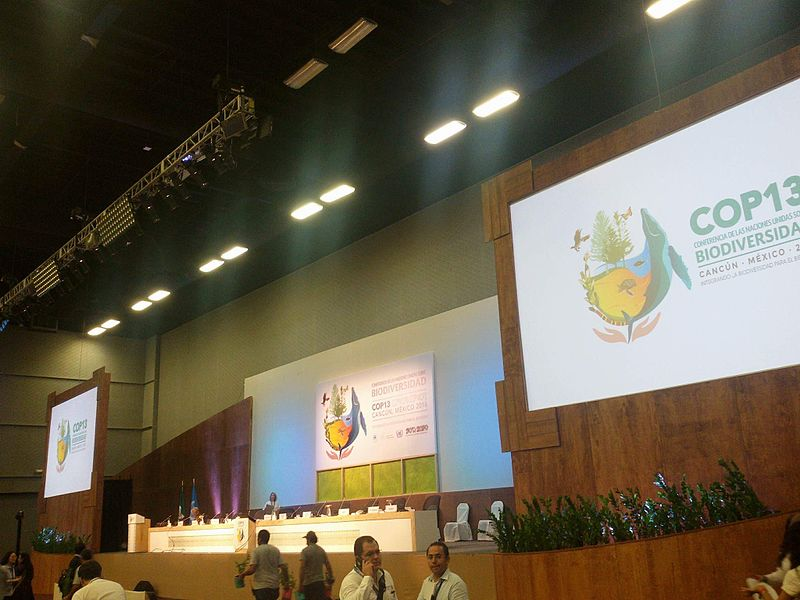 File:COP13 Mexico conference.jpg
