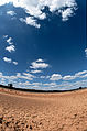 CSIRO ScienceImage 505 Drought Affected Ground.jpg