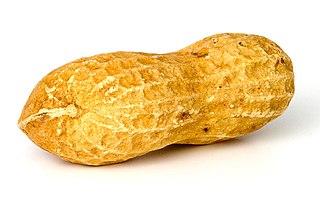 El malvado señor cacahuete.
