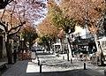 Calle Floridablanca.jpg