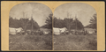Camp Malcher, Catskill Mountains, from Robert N. Dennis collection of stereoscopic views.png