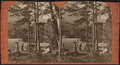 Camp life at Lake George, by Conkey, G. W. (George W.), 1837-ca. 1900.png