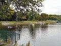 Canoes on Gorton Lower Reservoir - geograph.org.uk - 1504256.jpg