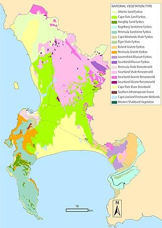Biodiversity of Cape Town - Cape Town's original vegetation types
