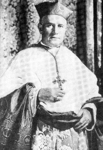 Patrick Joseph Hayes - Image: Cardinal Patrick Hayes