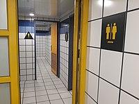 Туалет за остановкай скрытая камера