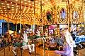 Carousel (509187649).jpg